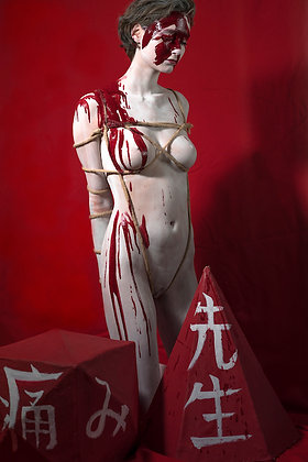 Dool Fiction - De maître à soumise - 67,5 cm x 47cm
