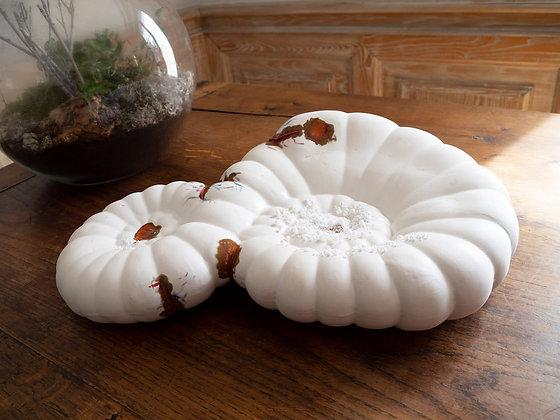 Solène Dumas - Spirale évolutionnaire 3 - 50 x 30 x 15 cm - Porcelaine et émail