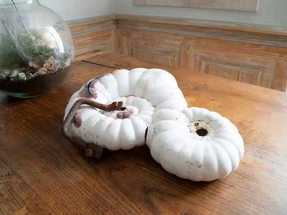 Solène Dumas - Spirale évolutionnaire 6 - 50 x 30 x 15 cm - Porcelaine et jus