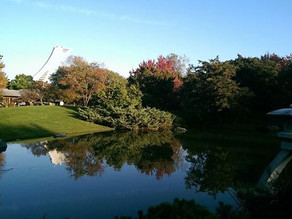 Montréal : Se perdre dans tes parcs !