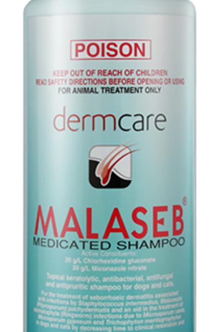 Dermcare Malaseb Medicated Shampoo