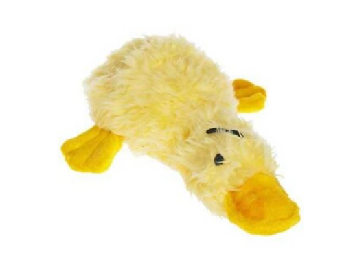 Duck Worth Webster Plush Dog Toy