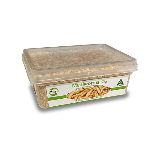 Mealworms 50g