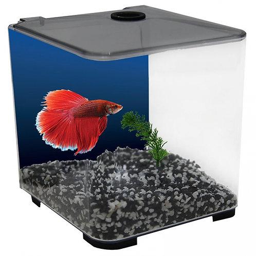 Aqua One Acrylic Betta Tank