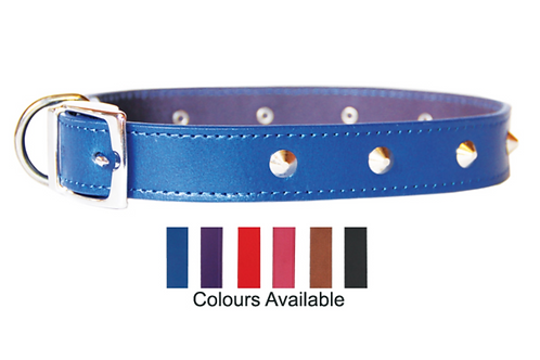 Beau Pets Deluxe Sewn Stud Collar