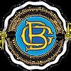 BCTN original logo.png