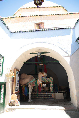 Travel Photography (Tunisia)