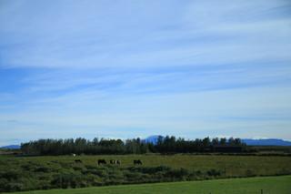 Travel Photography (Iceland)