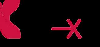 UMCNext-HOLSTON_logo_2clr_v03.png
