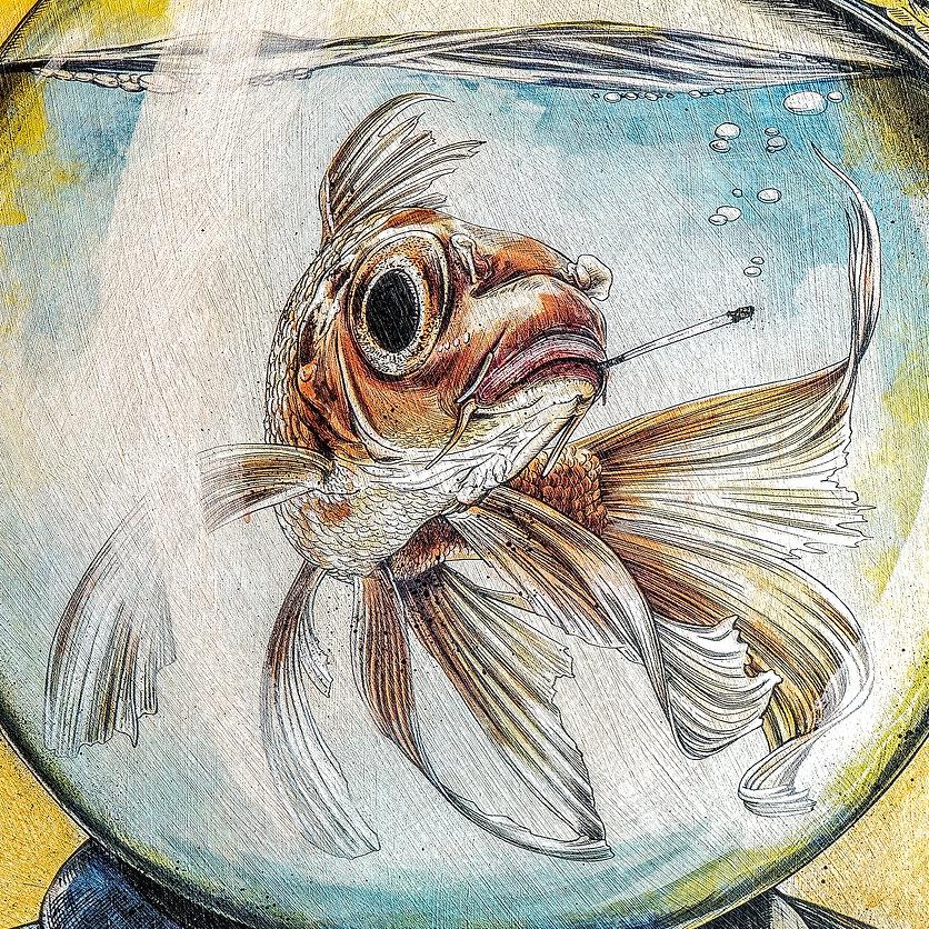 Fischkopp_Detail_1.jpg