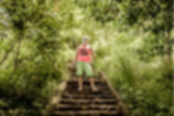 IMG_6674_Jungle.jpg
