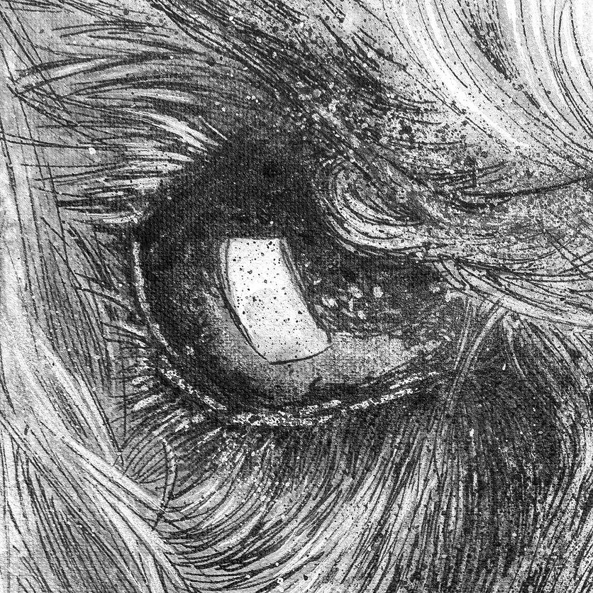Poodle_Front_Nose_Detail_02715_2.jpg