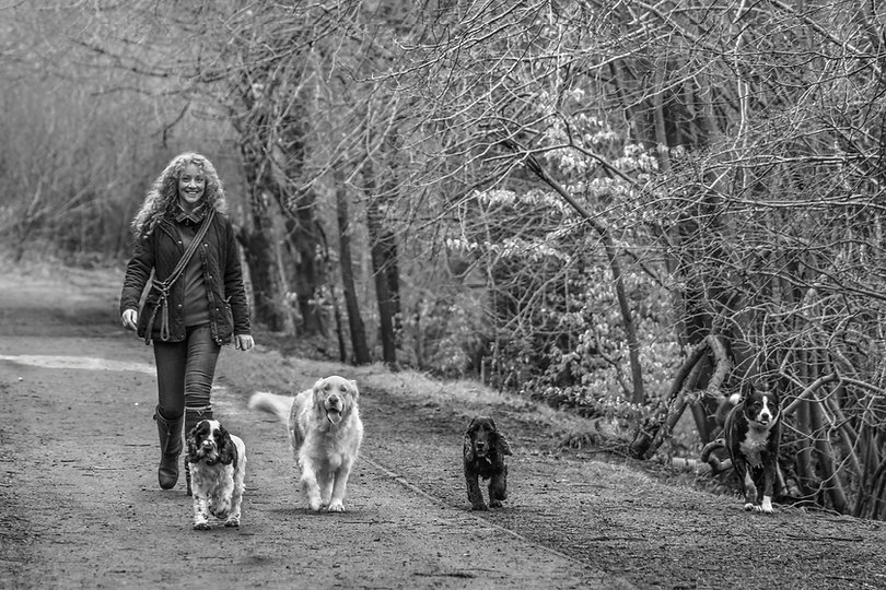 Me and dogs 2018-039-Edit.jpg