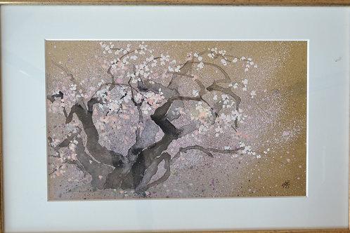 3.「左近の桜Ⅱ」