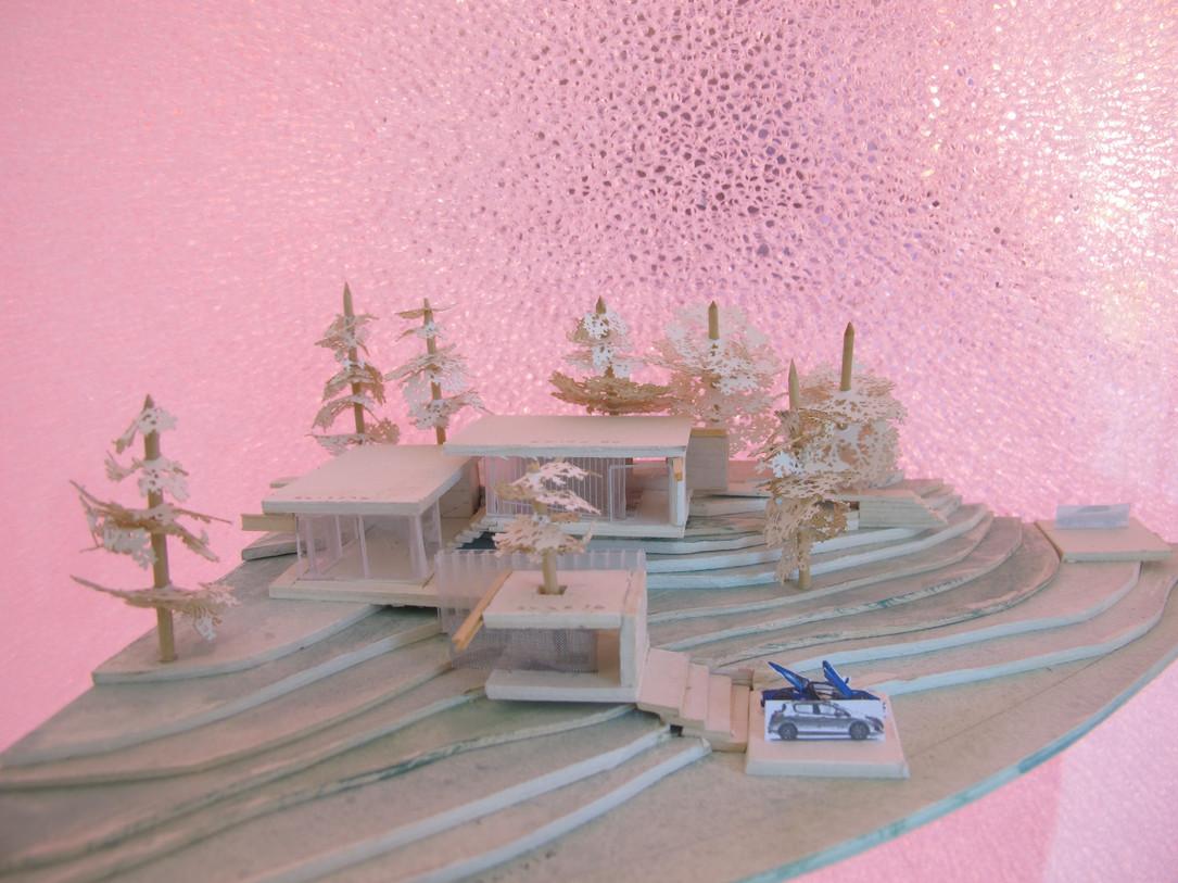 model 19.jpg