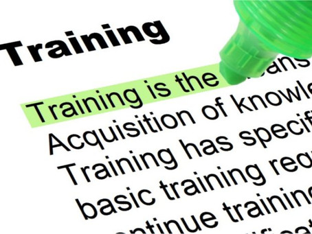 Why You Need Practical Training in Accounting, Taxation, and Tally.ERP?