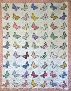 Asian Butterflies