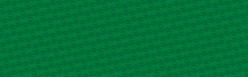 Sponsor-Slide-Green-BG.png