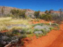 desert park.jpg