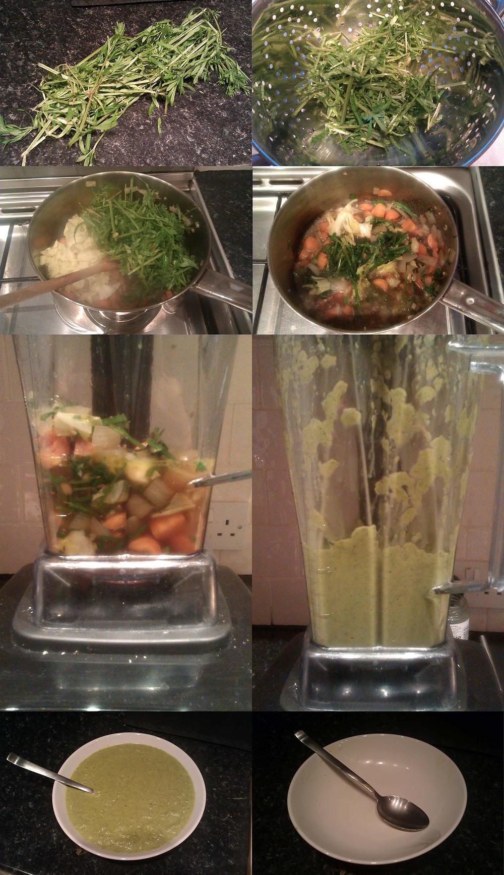 Goosegrass soup.jpg