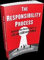 The_responsibilty_process-3D-transparent