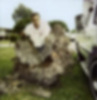 photo_hive_1-jpg-198x203.jpg