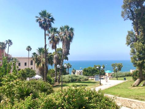 The Best of Tel Aviv