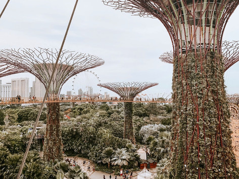 Singapore: the places not to be missed