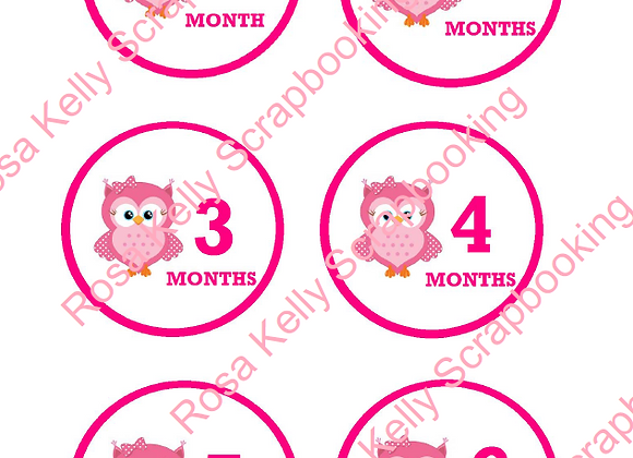 Owl Baby Girl Month Tags