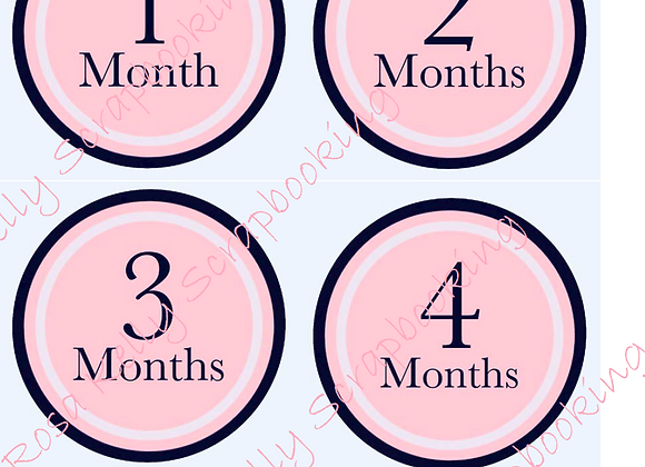 Glam Baby Month to Month Tags - English