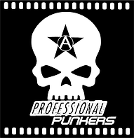 Punk Rock mixed with Art - Booking Bands for live Events - Booking Punk Events