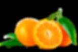 tangerina.png