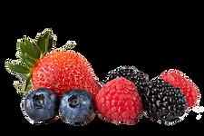 frutas vermelhas.png
