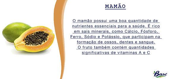 16. MAMÃO.jpg