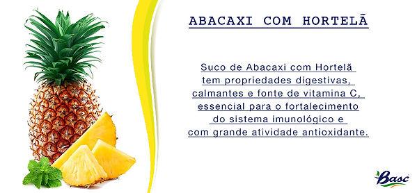 02. ABACAXI COM HORTELÃ.jpg