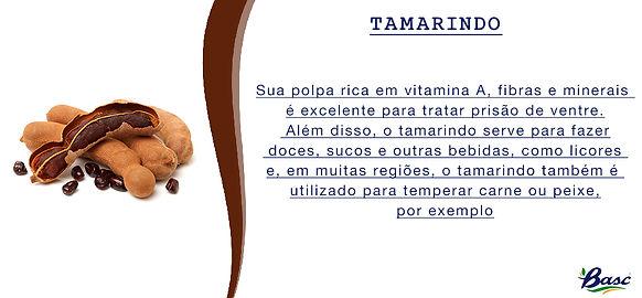 22. TAMARINDO.jpg