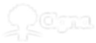 408-4080791_cigna-logo-white-png-transpa
