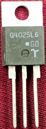 Q4025L6