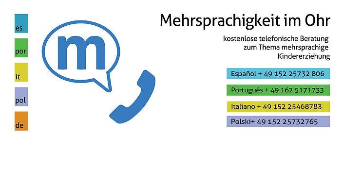 Asesorías sobre mltilingüismo