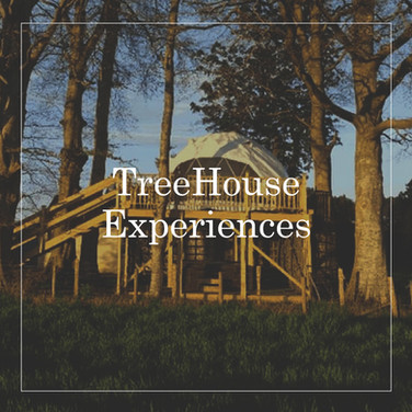 TreeHouse-Experiences.jpg