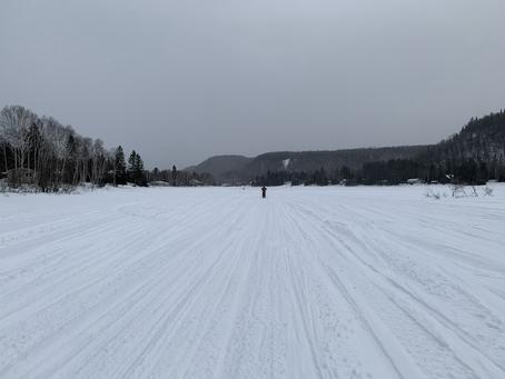 Promenade hivernale :)