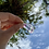 Thumbnail: Pingente de Fluorita Bruta