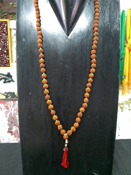 Japamala de Rudrakshas Pequenas