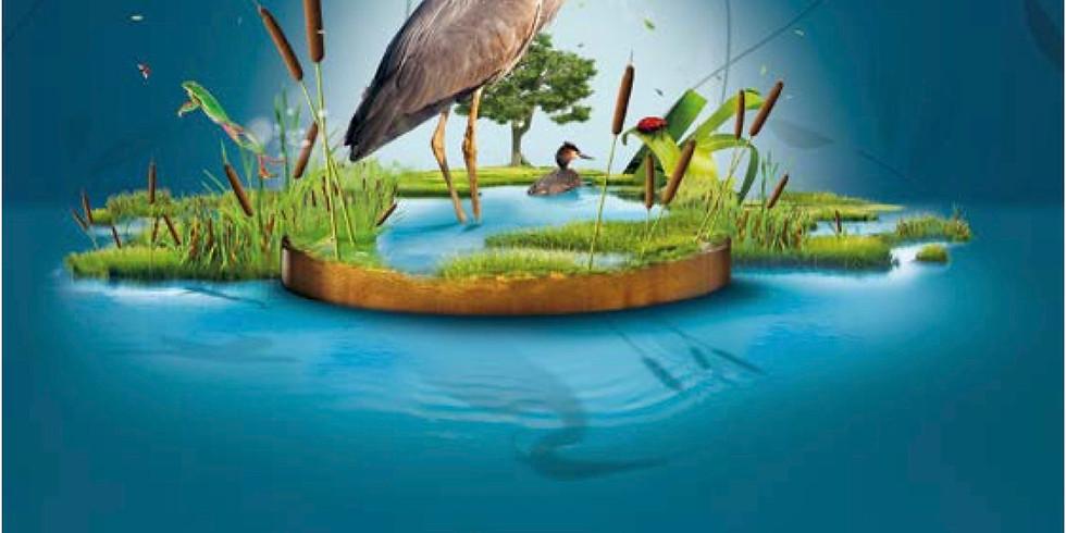 Journées mondiale des zones humides