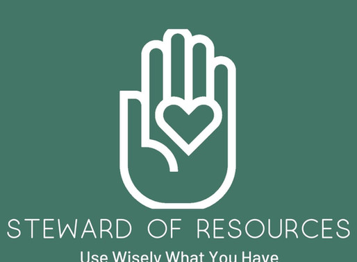 Steward of Resources