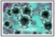 coronavirus1.PNG