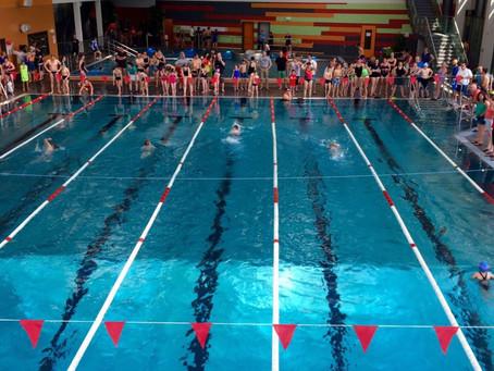 Training in der Schwimmhalle ab 5.10.  Bitte E-Mail beachten!