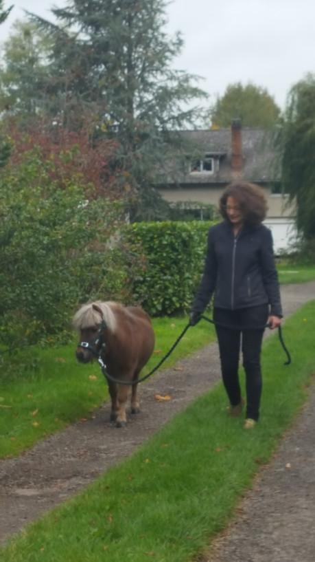 promenade poney Lando