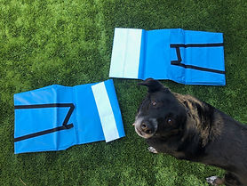 stabilizing dog tunnel saddlebag