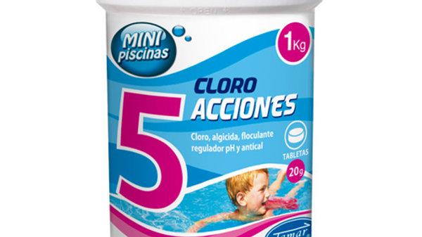 Cloro 5 Acciones MP